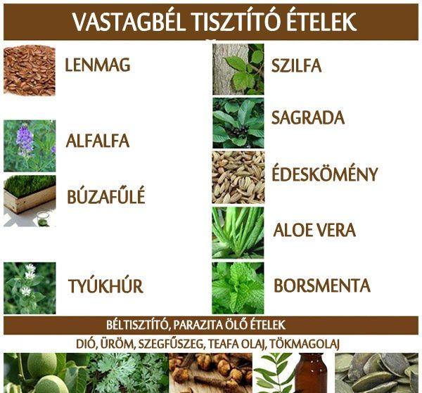 az egész természetes vastagbél méregtelenítő étrend)