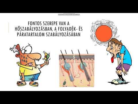 paraziták az emberi test tüneteiben)