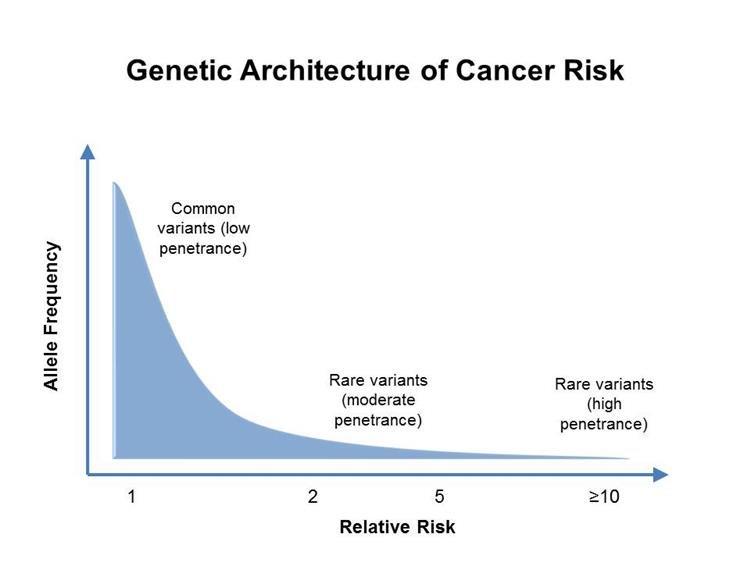rákgenetikai tanácsadási munkák