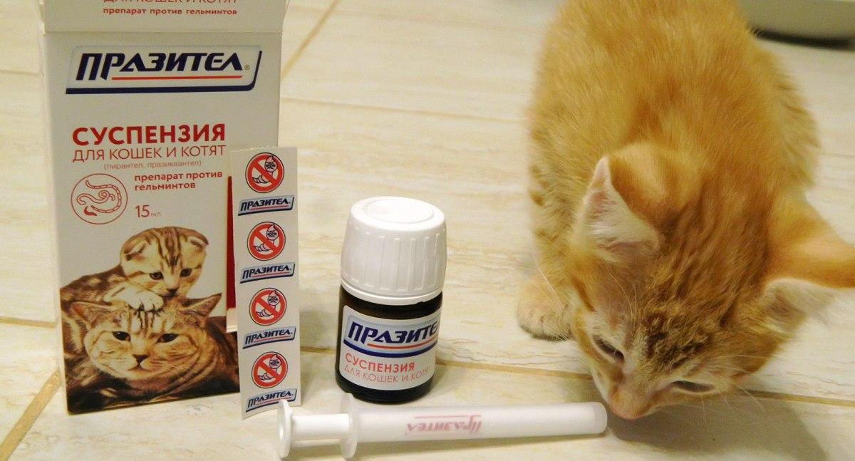 Kínai gyógyszer a parazitákra - Kerekféreg gyógyszer ellen