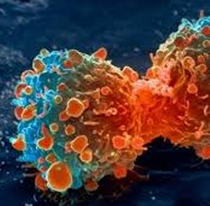 rák legagresszívebb növekedése