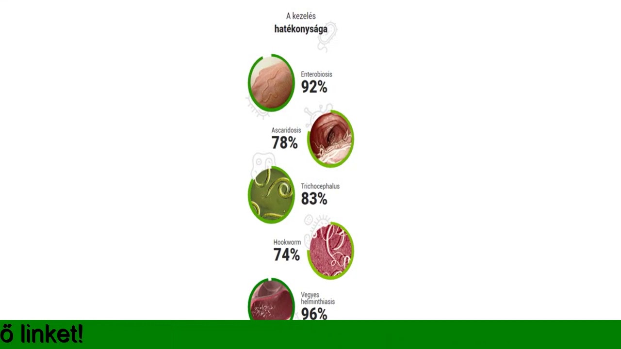 Enterobiasis melyik gyógyszer jobb. Mik azok a bélférgek?