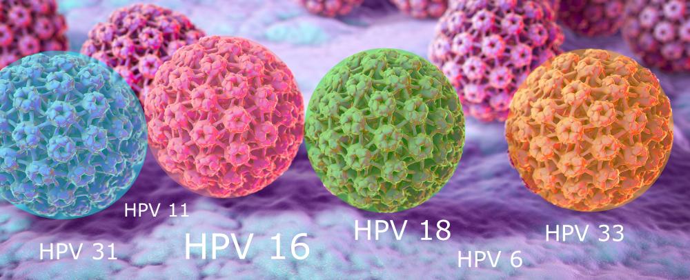 a partnernek condyloma van papillomavírus hpv onkogén