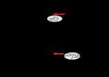 szarkóma rákos bögrék