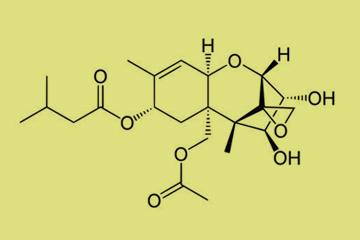 toxinok t 2 és ht 2 pinwormok az orrán