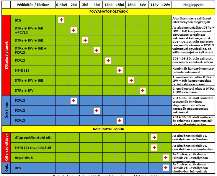 papilloma vírus vakcina menetrend