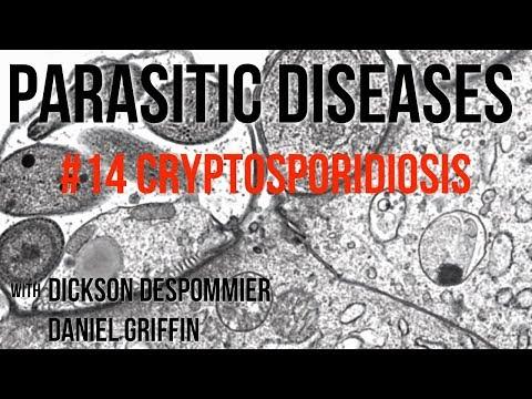 paraziták és gombás fertőzések