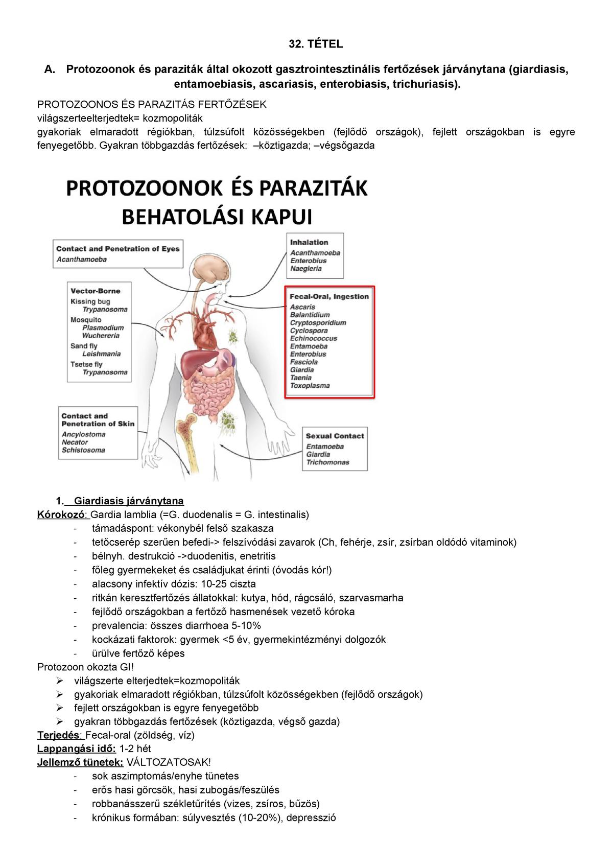 enterobiosis hol kell csinálni
