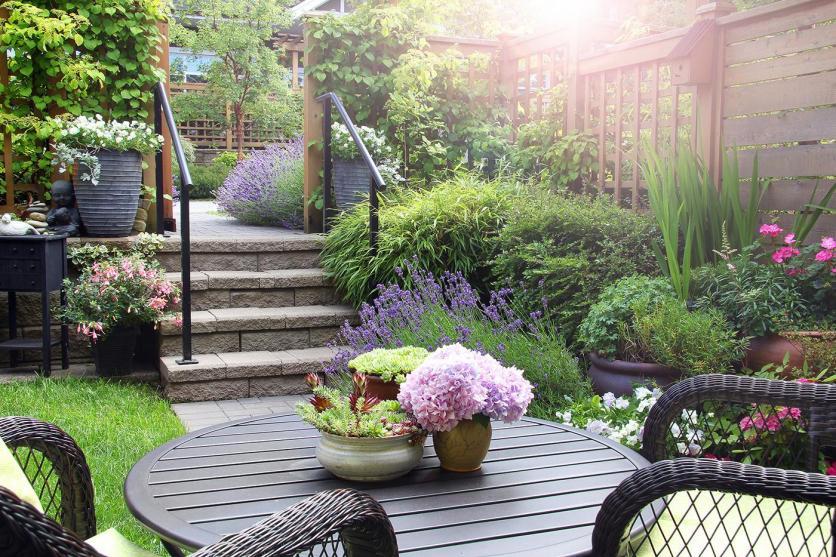 Közép uszkárt lehet kertben tartani?