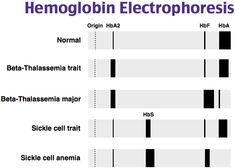 Az enterobiosis kimutatása. Mindig a legkisebbeket bántják