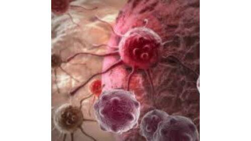 a rák agresszív