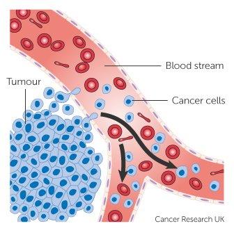 a rák megismétlődik
