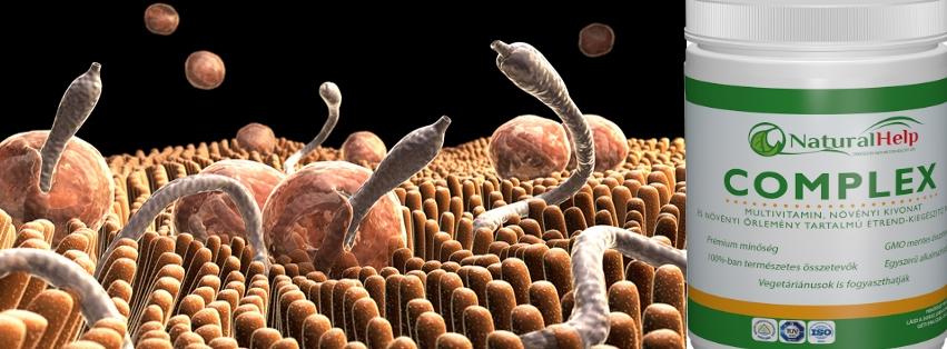 gyógymódok a paraziták ellen a szervezetben)