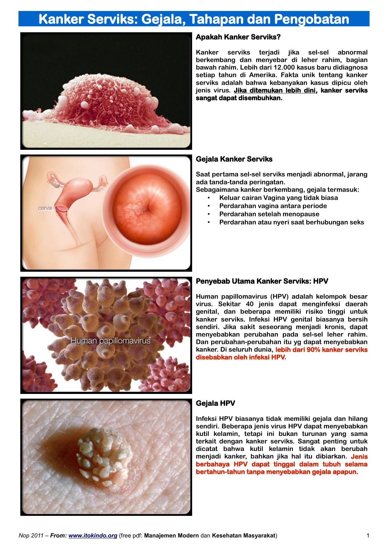 hpv vírus pada kanker serviks)
