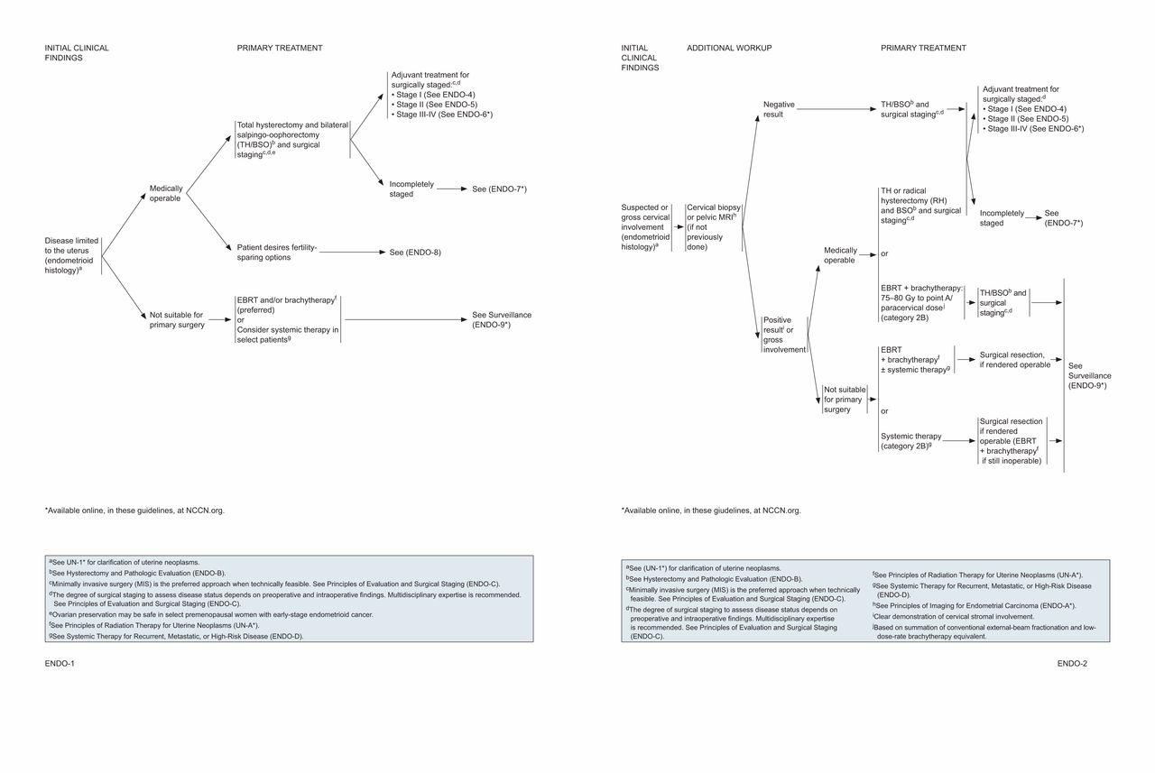 endometrium rák nccn iránymutatás)