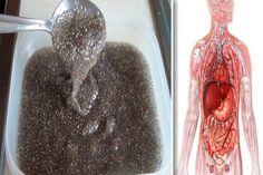 Az otthoni gyógymód vastagbél tisztítja a méregtelenítést