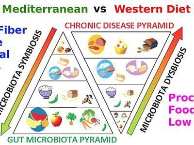 dysbiosis gyógynövények