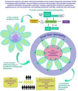 hpv vírus és fibromyalgia)