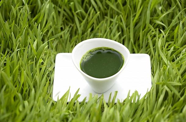 élő zöld élet méregtelenítés