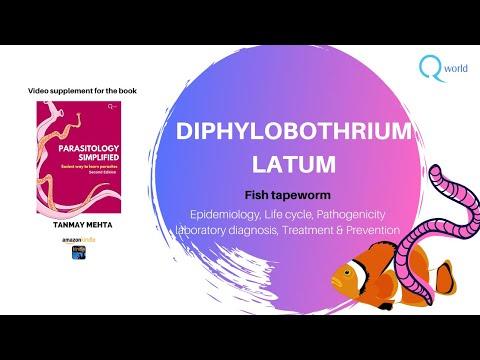 a difhildobothriasis tünetei és kezelése)