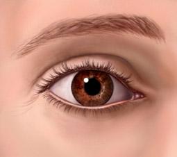 papilloma eltávolítás a szemhéj klinikán